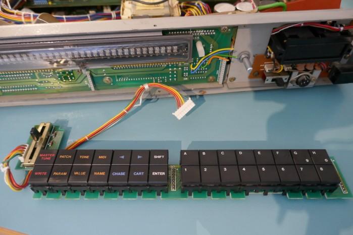 P1050489 (Large)
