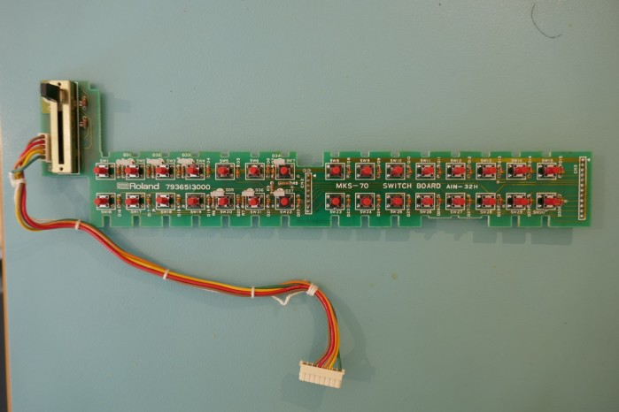 P1050505 (Large)